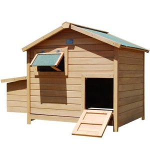i.Pet Deluxe Roomy Chicken Coop